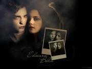 Edward-Bella-twilight-series-767491_800_600 - Copia (2)